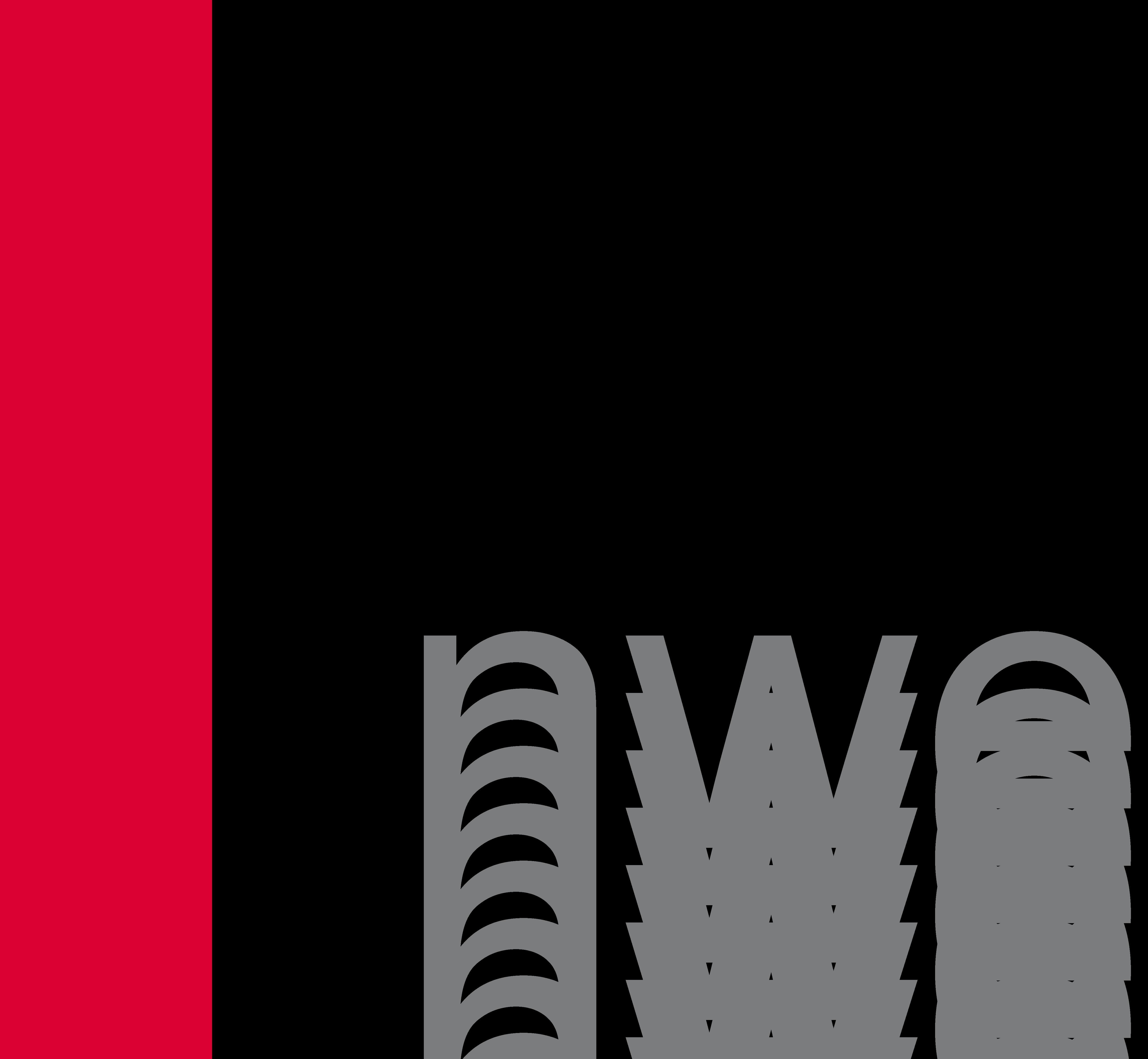 nwe logo 31 03 2008